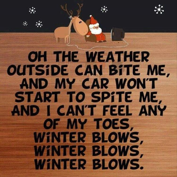 Name:  winter-blows.jpg