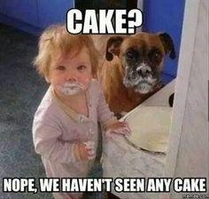 Name:  cake.jpg Views: 849 Size:  12.3 KB