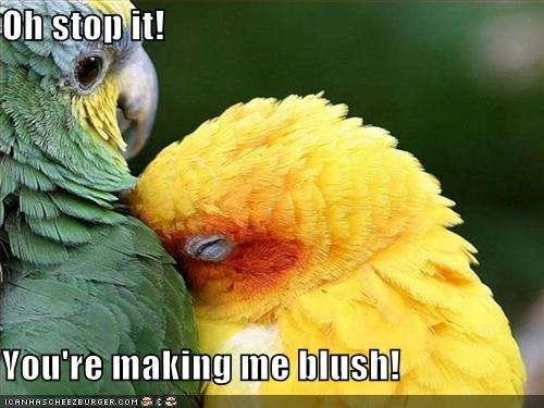 Name:  blushing bird.jpg Views: 89 Size:  30.4 KB