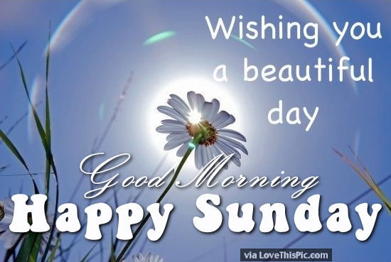 Name:  231869-Wishing-You-A-Beautiful-Day-Good-Morning-Happy-Sunday.jpg Views: 98 Size:  42.6 KB