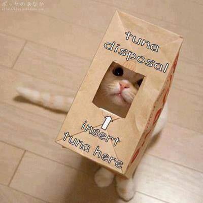 Name:  20-Funny-Animal-Jokes-and-Memes-1-Funny-Animals-humor.jpg Views: 37 Size:  19.4 KB