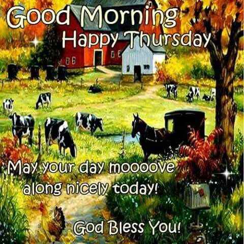 Name:  257385-Good-Morning-Happy-Thursday-May-Your-Day-Move-Along-Nicely.jpg