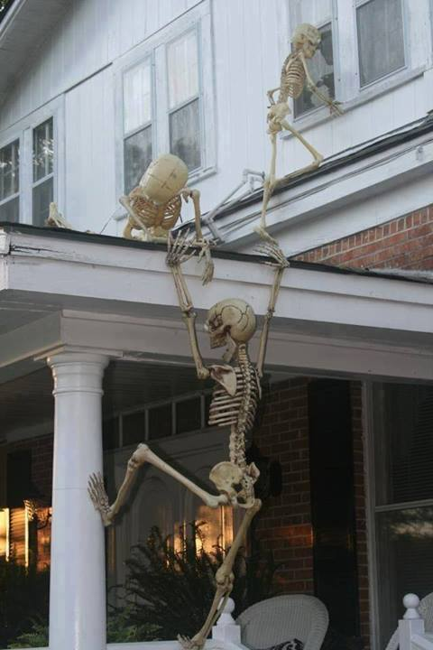 Name:  skeletons breaking into home.jpg