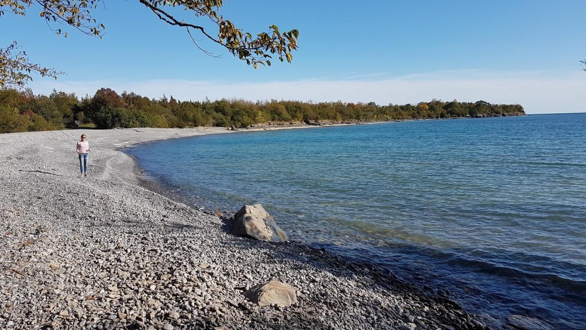 Name:  October at Point Petre.jpg Views: 62 Size:  430.0 KB