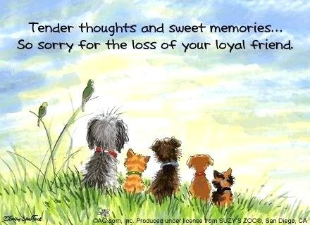 Name:  pet-condolences-sympathy-messages-animal-dog-died.jpg Views: 73 Size:  28.7 KB