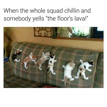 Name:  on-sofa-caption-reads-when-the-whole-squad-is-chillin-and-somebody-yells-that-the-floor-is-lava.jpg Views: 64 Size:  41.7 KB