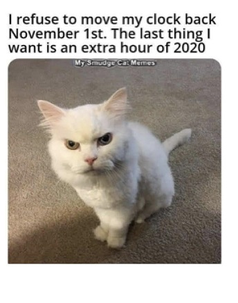 Name:  2020 time change cat.jpg Views: 64 Size:  46.7 KB