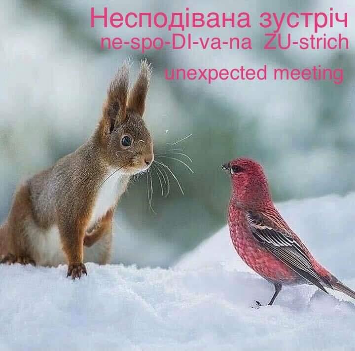 Name:  facebook_1606497320705_6738138138229097280.jpg Views: 55 Size:  71.0 KB