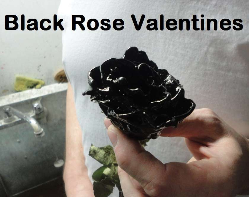 Name:  Black-Rose-Valentines.jpg Views: 2196 Size:  45.2 KB