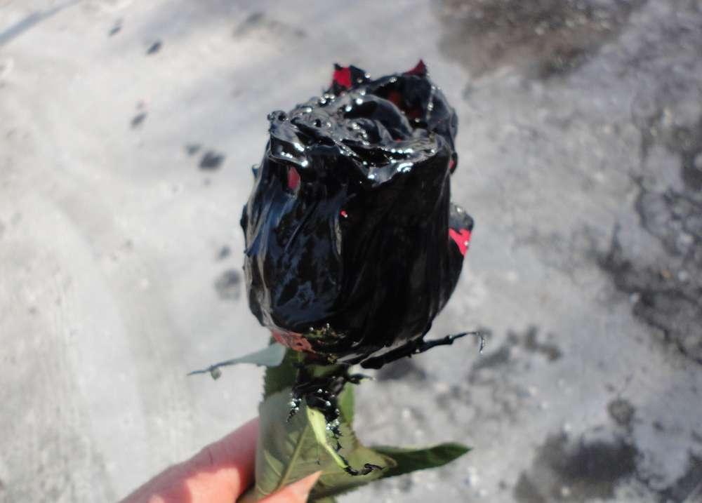 Name:  finsihed rose1.jpg Views: 643 Size:  54.2 KB