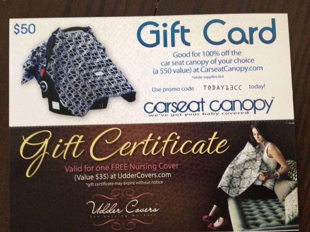 Name image.jpg Views 3775 Size 91.0 KB & Free car seat canopy nursing cover baby carrier nursing pillow
