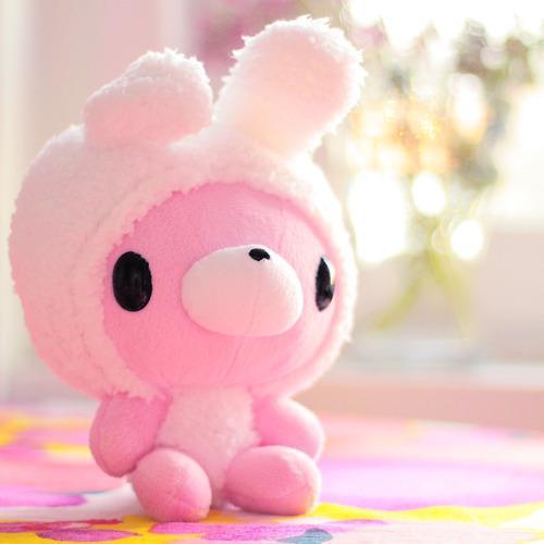 Name:  bunny-cute-pink-teddy-bear-Favim.com-342893_large.jpg Views: 23114 Size:  19.8 KB