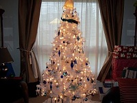 members/mrssunshine-albums-my-white-christmas-tree-picture150181-grad-512.JPG
